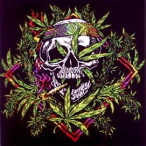 weed skull pictures to pin on pinterest pinsdaddy