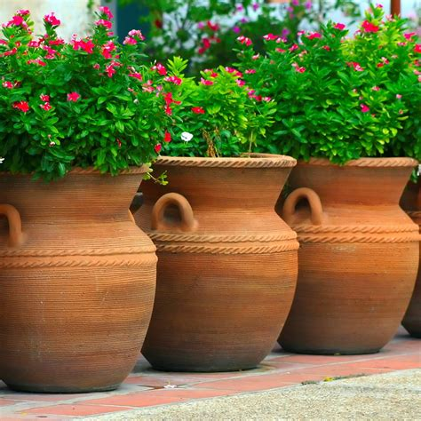 Garden Decor: Fascinating Garden Decoration With Various Big Plant Pots, square plastic plant