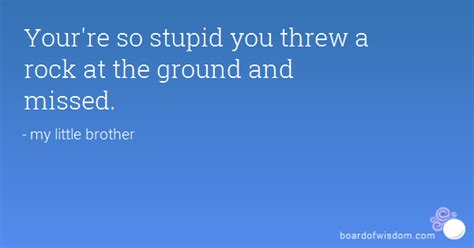 Stupid Quotes The Best Stupid Quotes 1 To 10