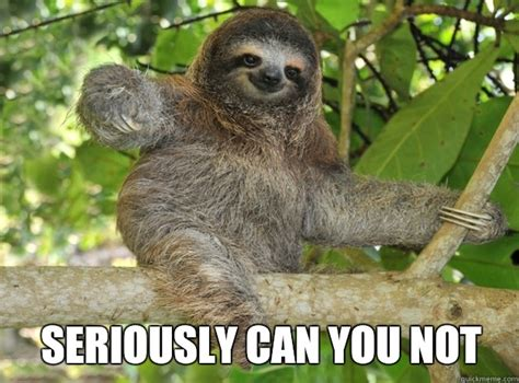 Can You Not Meme - seriously can you not sloth menthols quickmeme