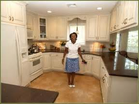 Discount Kitchen Cabinets San Diego Refacing Kitchen Cabinets Cool Wholesale Kitchen Cabinets