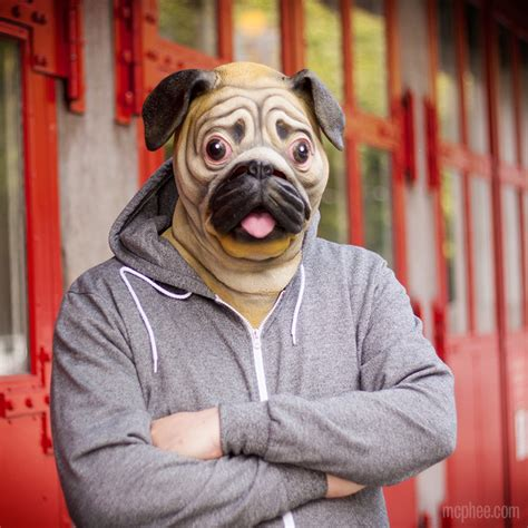 pug mask pug mask a mask so you can look like a