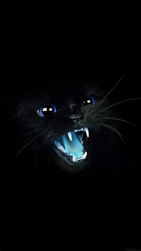 papersco iphone wallpaper mj black cat blue eye