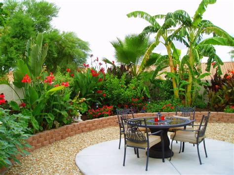 how to create a tropical backyard 301 moved permanently