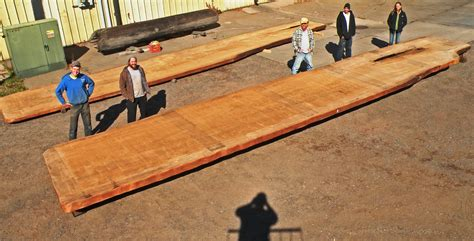 united woodworking how do you finish 50 000 year kauri wood