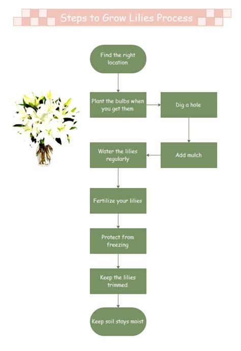 growlilies process steps free growlilies process steps