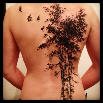 Tattoo Designs Meaning Rebirth | birch tree tattoo meaning rebirth beginnings cleansing