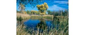 san bernardino national wildlife refuge recreation and