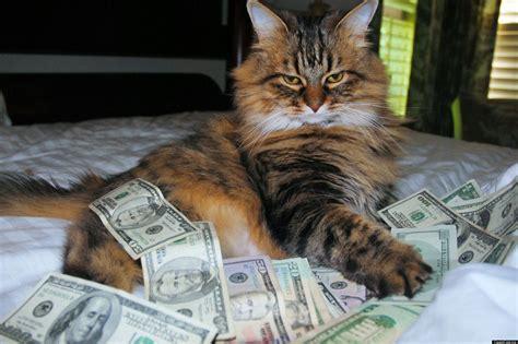 Money Meme - cash cats photo and art show flaunts hip trifecta of