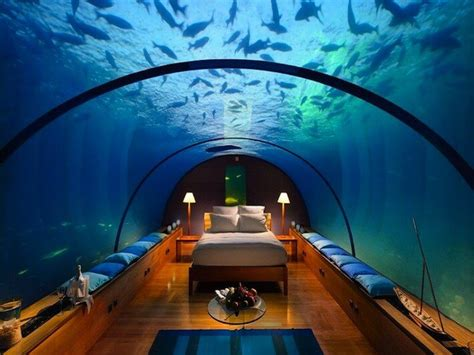 bedroom under water room of the day sleep amongst the sealife in this