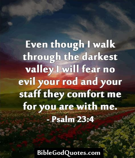 Your Rod And Your Staff They Comfort Me by 17 Best Images About Words Of Comfort On Psalm