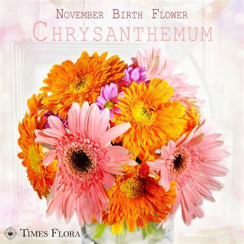 november birth best 25 november birth flowers ideas on