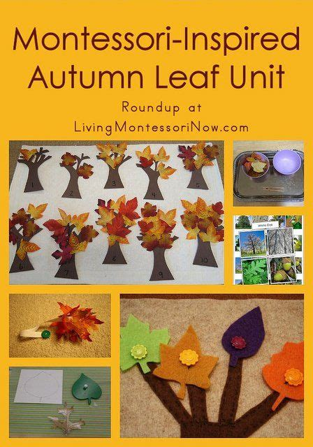 why use themes in kindergarten 63 best images about fall theme in preschool on pinterest