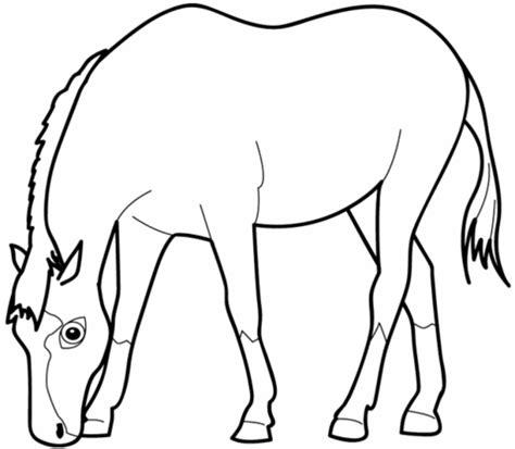 ausmalbild grasendes pferd ausmalbilder kostenlos zum
