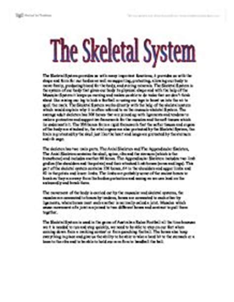 Muscular System Essay by The Skeletal System A Level Physical Education Sport Coaching Marked By Teachers