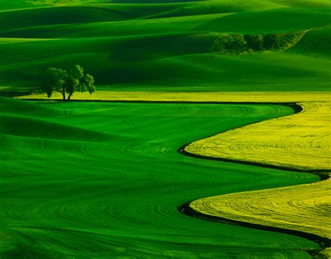 using filters to overcome the challenges of the palouse