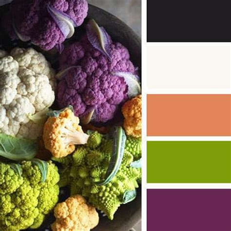 purple and orange color scheme purple and green color palette www imgkid com the