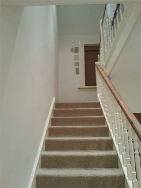 what colour carpet goes with magnolia walls carpet what colour carpet goes with magnolia walls carpet