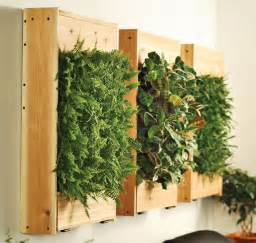 Wall Garden Indoor indoor living wall planters the green head