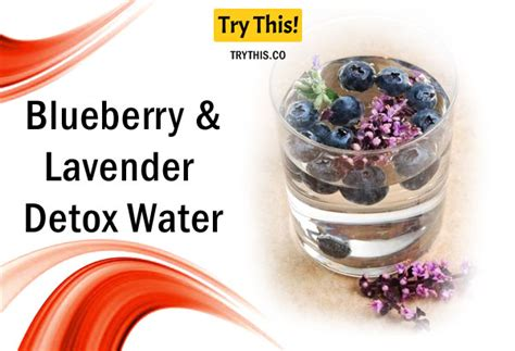 Fresh Lavender For Detox Water by Detox Water Top 50 Fruit Infused Water Recipes Health