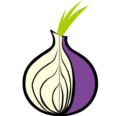 onion tor tor weighing the benefits and risks