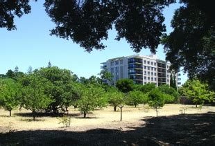 palo alto housing corporation palo alto housing corporation sells maybell site news palo alto online