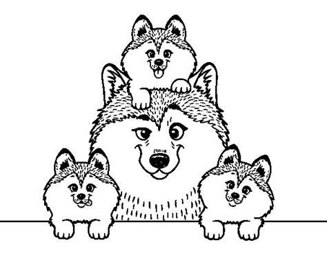 imagenes de la familia de animales dibujo de familia husky para colorear dibujos net