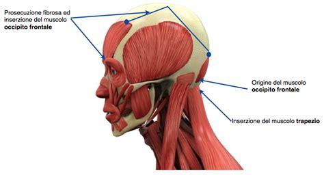 giramenti di testa cervicale cervicale i sintomi l altra riabilitazione