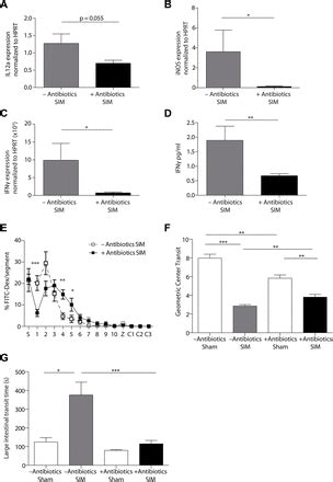 irf4 dependent cd103+cd11b+ dendritic cells and the