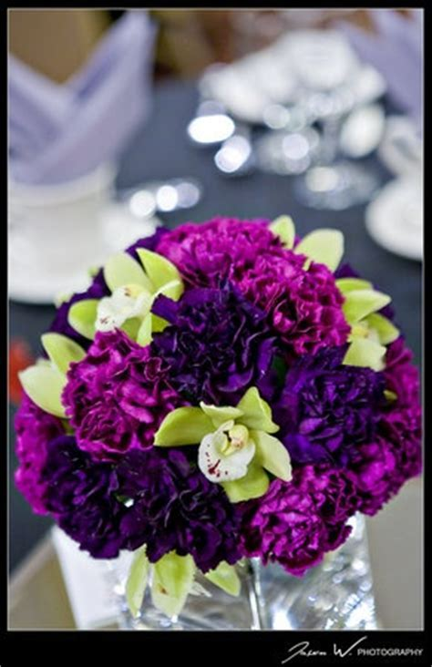 25  best ideas about Purple carnations on Pinterest