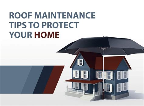 roof maintenance tips to protect your home