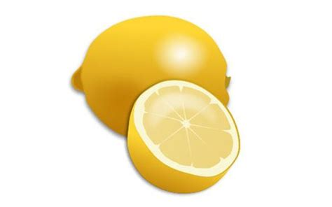 lemon drop martini clip art fresh lemon and lemon slice realistic vector vector