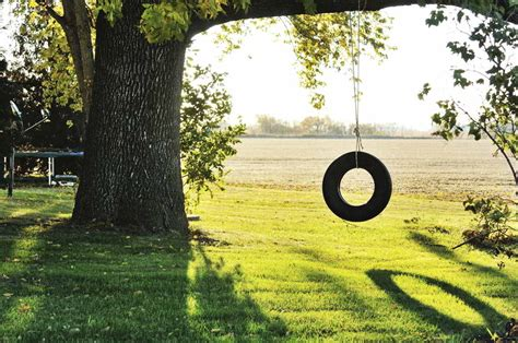 tire swing a layman s guide on how to make a tire swing for your backyard