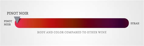 what color is noir amazing pinot noir wine facts wine folly