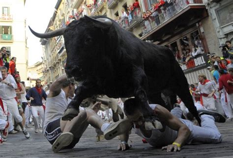 Running With The Bulls running of the bulls the history and controversy of