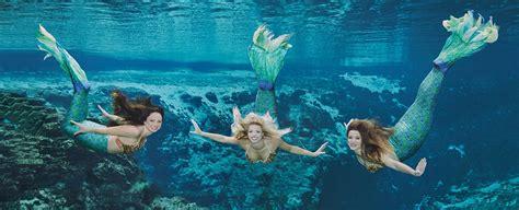 boat rental weeki wachee mermaid shows weeki wachee springs state park