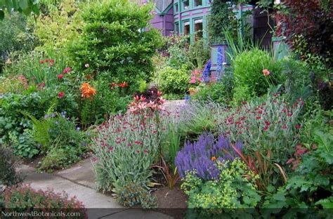 beautiful seattle garden northwest botanicals inc