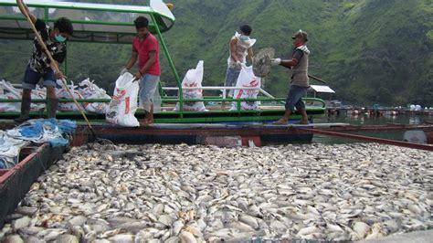 Jual Keramba Ikan Di Medan penelitian kementrian perikanan dan balai karantina