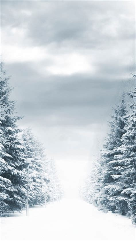 christmassnow pictures for iphones forests landscapes roads snow trees wallpaper allwallpaper in 4158 pc en