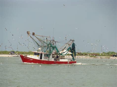 shrimp boat stuff shrimp boat cameron louisiana usa louisiana fishing