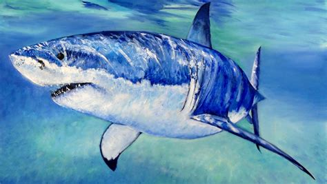 great acrylic paint great white shark speed painting