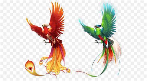 phoenix bird png    transparent bird png