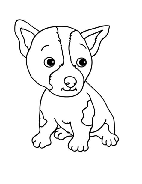 coloring pages chihuahua puppies free coloring pages of puppy chihuahua