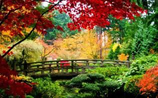 world architecture bridges asian oriental garden fall autumn colors seasons leaves stream plants