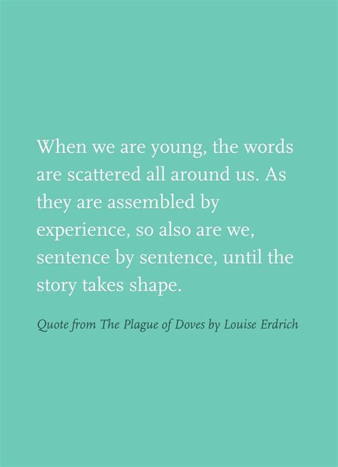 The Plague Of Doves A Novel P S the 25 best louise erdrich ideas on library