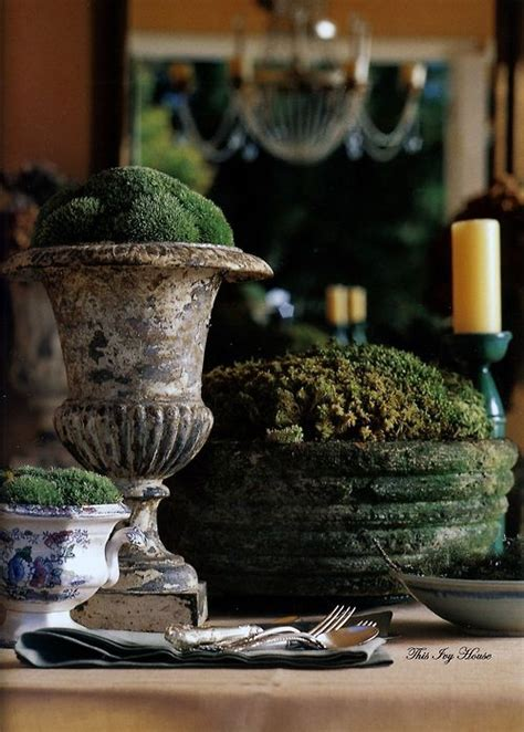 37 cool moss outdoor and indoor d 233 cor ideas digsdigs