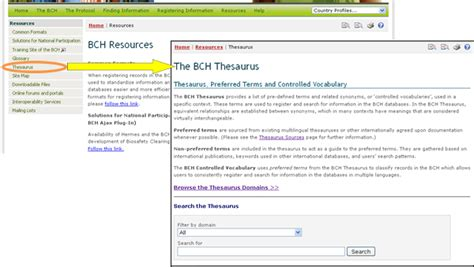 section synonyms thesaurus section 28 images library ict where to find