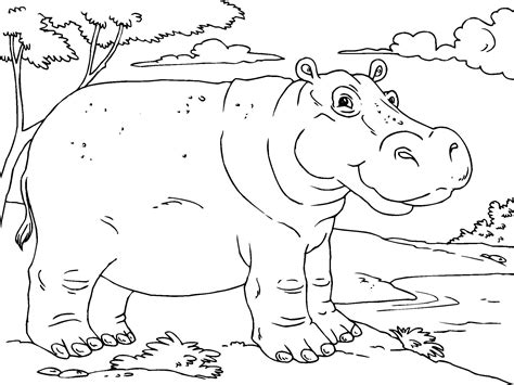 coloring page kids com hippo coloring pages to print free printable hippo