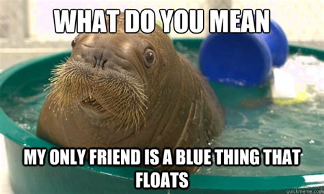 Meme Bucket - what do you mean my only friend is a blue thing that