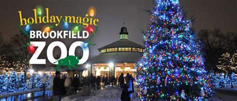brookfield zoo lights brookfield zoo lights magic discount tickets